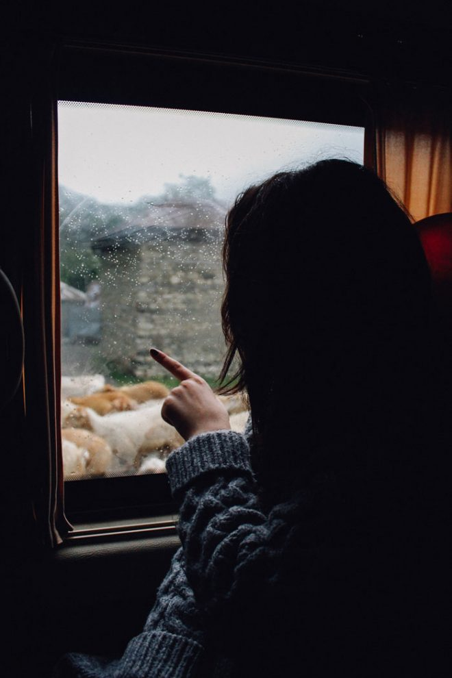 Woman turned away pointed at animals through a train window