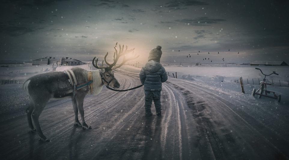 reindeer fantasy