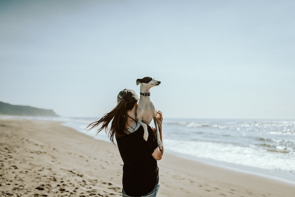 A woman walking down a beach with a dog looking up over her shoulder